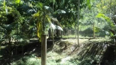 Sítios - Sítio na Guabiruba