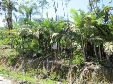 Terrenos - Terreno Residencial - Loteamen