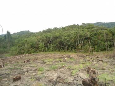 Terrenos - Terreno Para Sitio