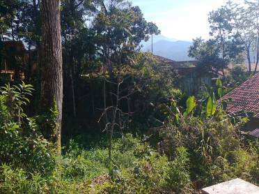Terrenos - Terreno Guabiruba Lageado
