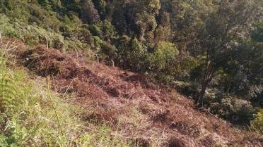 Terrenos - Terreno Bairro Azambuja